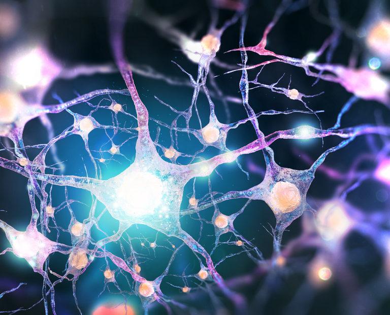 Neurotransmisores de felicidad